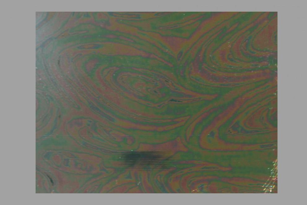 Bild Wachsplatte irisierend 69 tanne 200x100x0,5