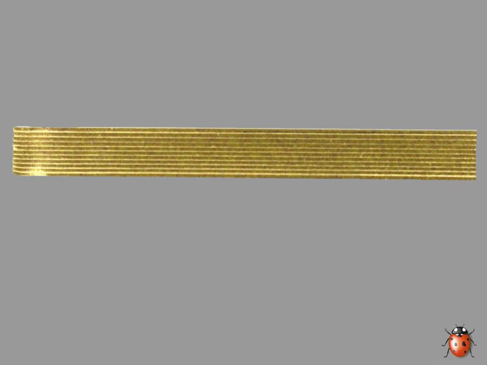 Bild Wachszierstreifen 3 mm x 200 mm flach gold glänzend 12 Stk